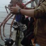 6月9日 最新の釣果(中深海)