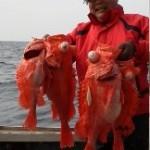 1月3日 深海乗合 キンメアコウ狙い アコウ43~68cm1人1~8匹@大型が混ざった、キンメ、後半釣果が伸びた。1人5~21匹@アカムツ、カサゴ、サバ、クロムツ混ざり